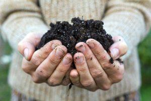 Un terreau fertile est le produit du travail de la Compostière du Val-de-Ruz. A mélanger avec l'équivalent de terre tant la matière est puissante!